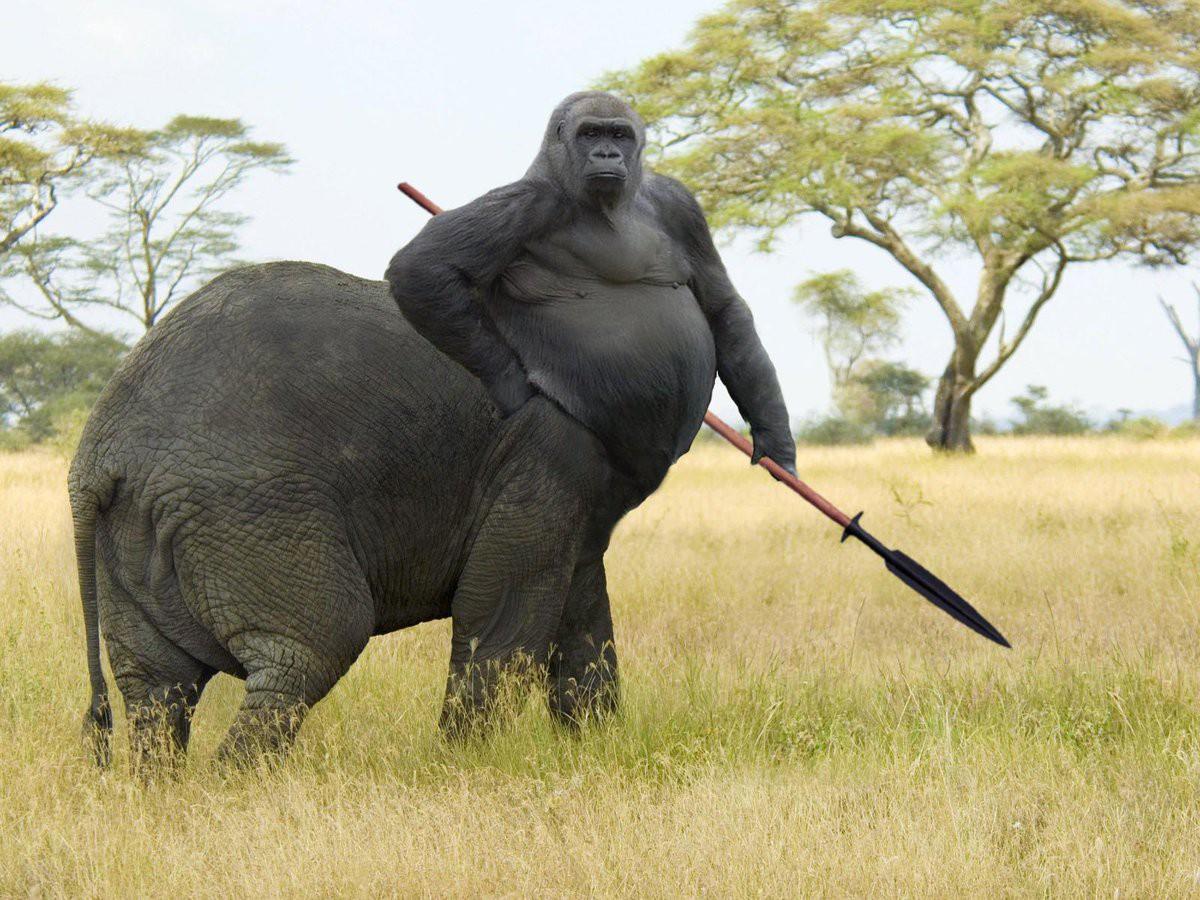 Những loài vật mới chỉ xuất hiện gần đây trong thời đại photoshop - Ảnh 17.