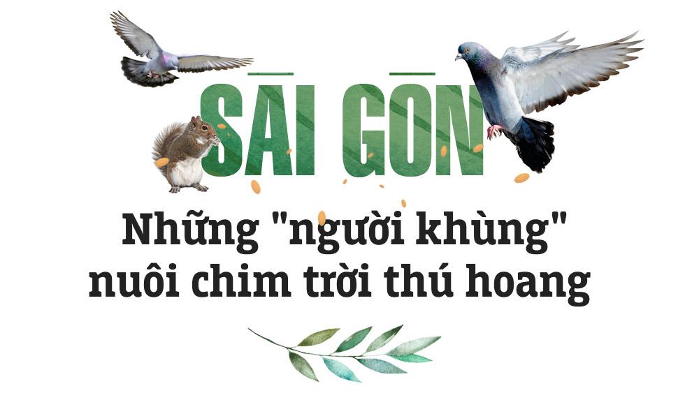 Những người Sài Gòn khùng nuôi chim trời thú hoang - Ảnh 1.
