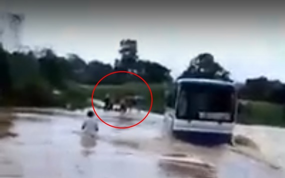 Thanh Hóa: Xe khách chết máy giữa dòng nước lũ cuồn cuộn, dân dùng dây thừng giải cứu 47 học sinh - Ảnh 2.