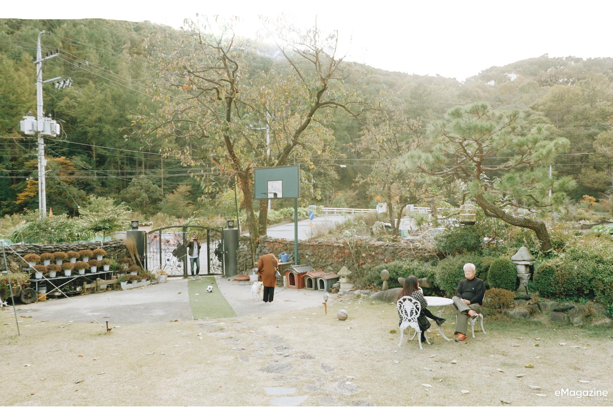 Cuộc gặp gỡ với bố Song Joong Ki tại quê nhà trước siêu đám cưới: Mọi thứ cứ dung dị, bình yên như thế - Ảnh 13.