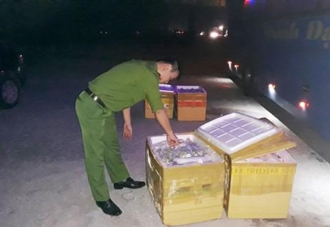 Hơn 1 tấn mèo, gà đông lạnh quá đát bị bắt giữ khi đang tuồn về Thái Bình - Ảnh 2.