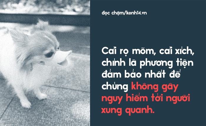 Từ vấn đề bắt nhốt chó ở TP.HCM: Hãy biết yêu thú cưng một cách văn minh và thấu hiểu! - Ảnh 6.
