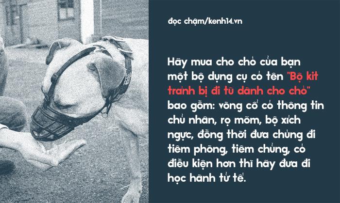 Từ vấn đề bắt nhốt chó ở TP.HCM: Hãy biết yêu thú cưng một cách văn minh và thấu hiểu! - Ảnh 11.