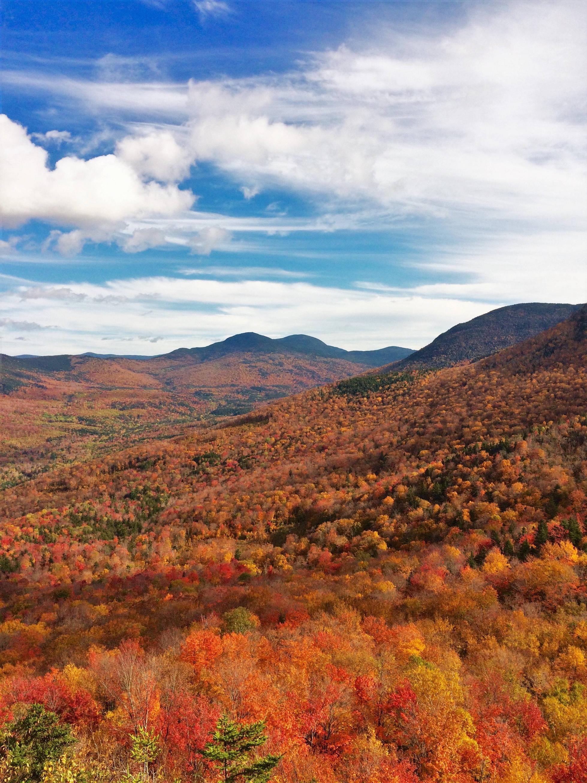 Ngắm phong cảnh đẹp đến ngoạn mục của những khu rừng vào mùa thu - Ảnh 13.