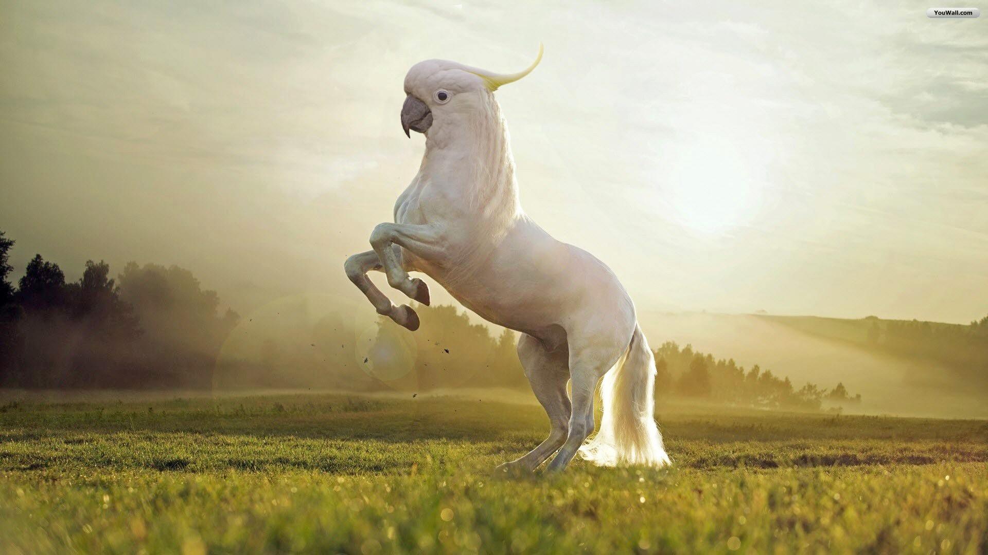 Những loài vật mới chỉ xuất hiện gần đây trong thời đại photoshop - Ảnh 21.