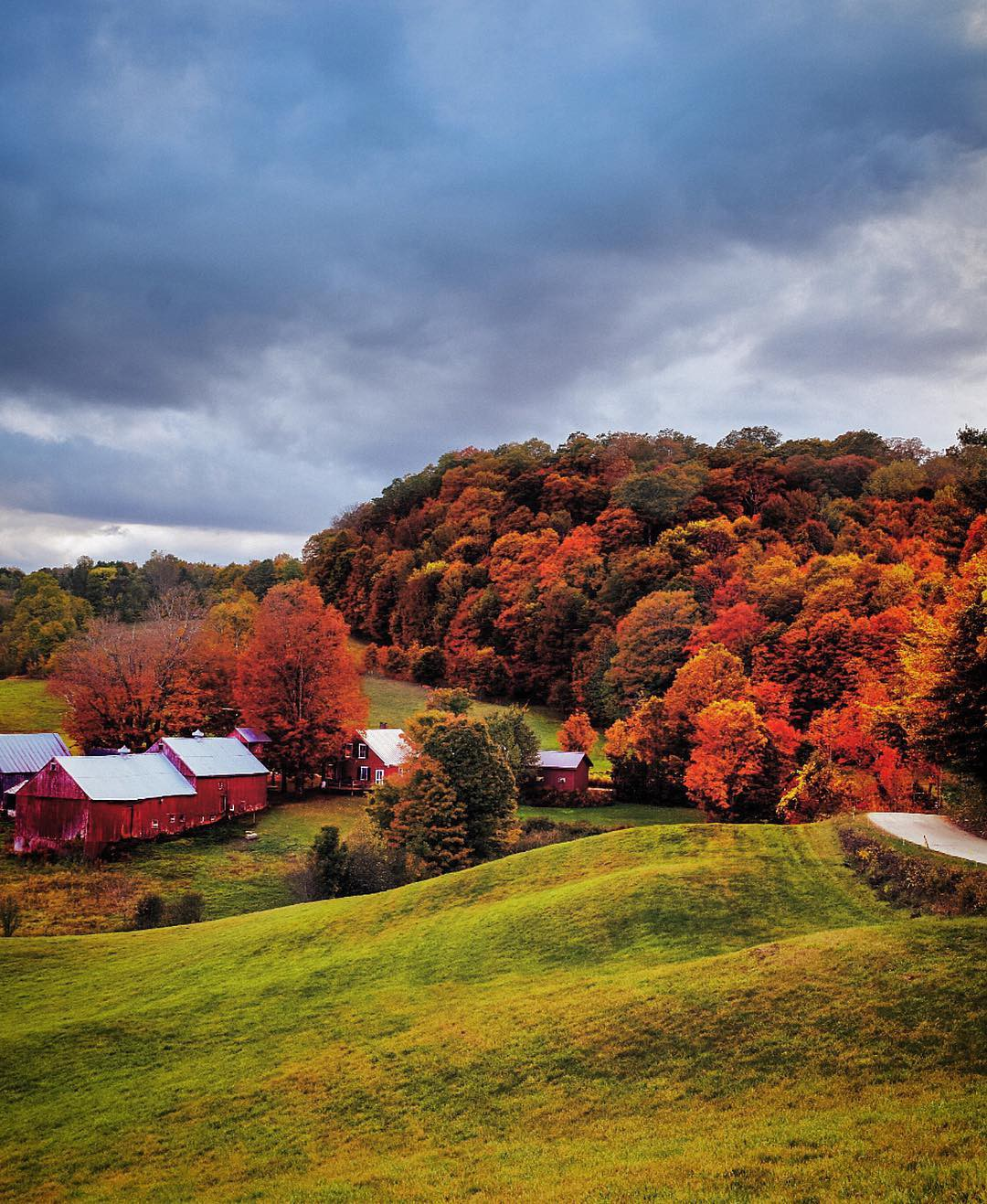 Ngắm phong cảnh đẹp đến ngoạn mục của những khu rừng vào mùa thu - Ảnh 15.