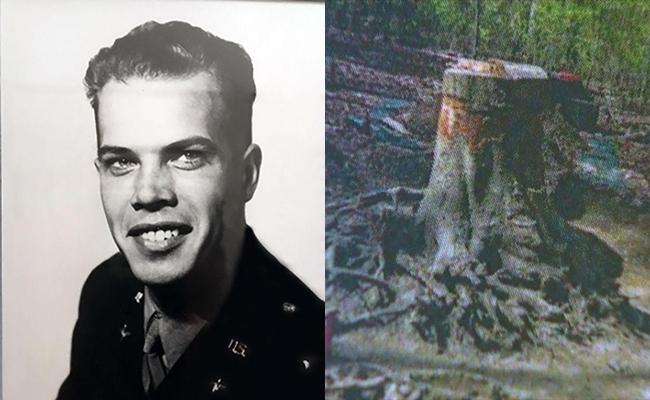 70 năm sau cú nổ máy bay, người ta đã sững sờ khi tìm thấy hài cốt phi công ngập sâu trong rễ cây - Ảnh 1.