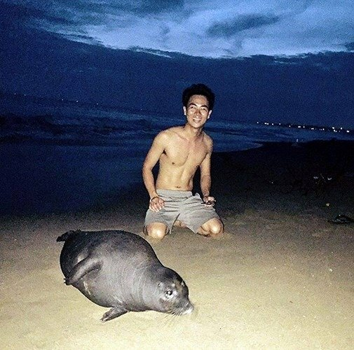 Hải cẩu bị đánh chết và nỗi oan của người dân Phan Rí Cửa - Ảnh 5.