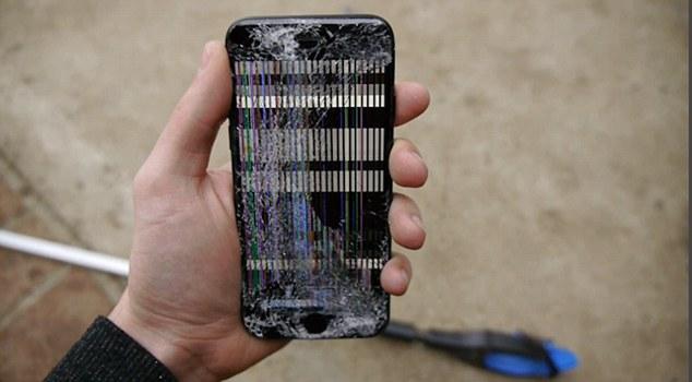 Thử nghiệm điên rồ: Cho cá sấu nhai iPhone 7! - Ảnh 4.