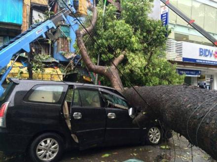 Hà Nội trực 24/24 ứng phó với mưa lũ và bão số 2 - Ảnh 1.
