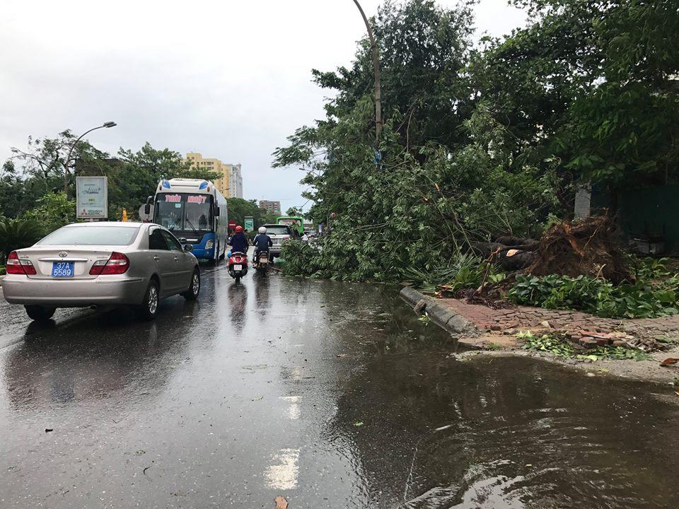 Chùm ảnh: Đường phố TP Vinh - Nghệ An tan hoang sau bão số 2 - Ảnh 3.