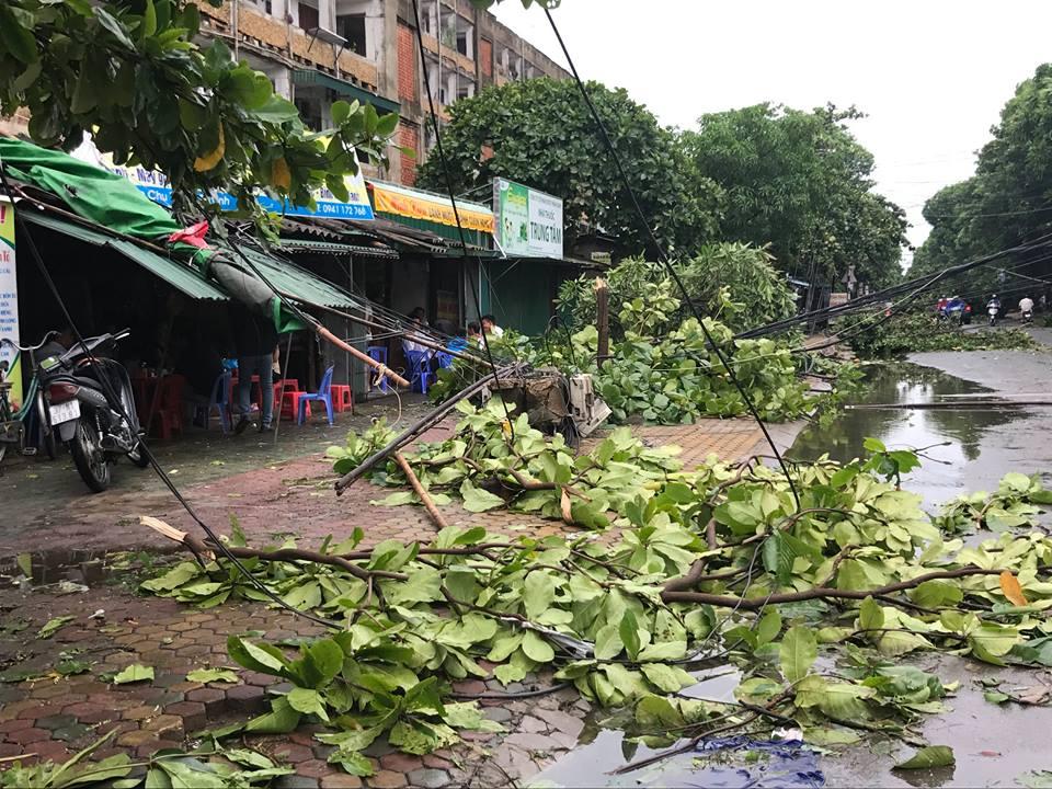 Chùm ảnh: Đường phố TP Vinh - Nghệ An tan hoang sau bão số 2 - Ảnh 4.