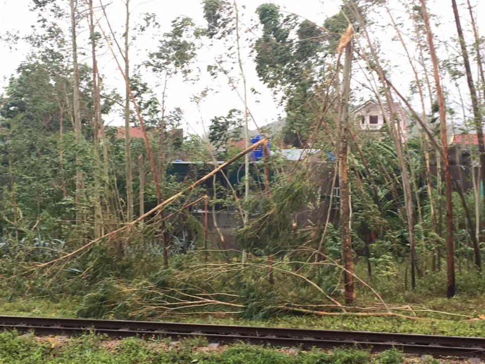 Nhiều chuyến tàu bị ảnh hưởng, phải dừng chuyến khi cơn bão số 2 đi qua - Ảnh 7.