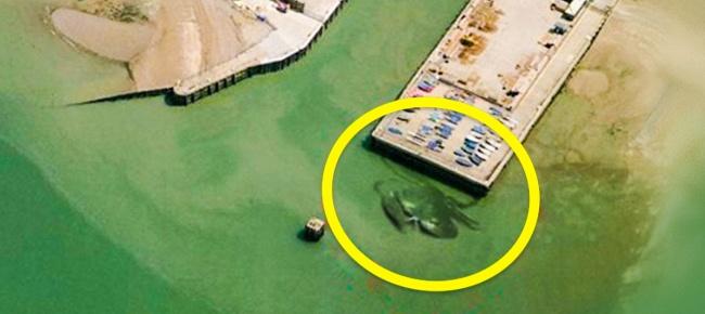 10 hình ảnh lạ lùng nhất có thể tìm thấy ngay trên Google Maps - Ảnh 19.