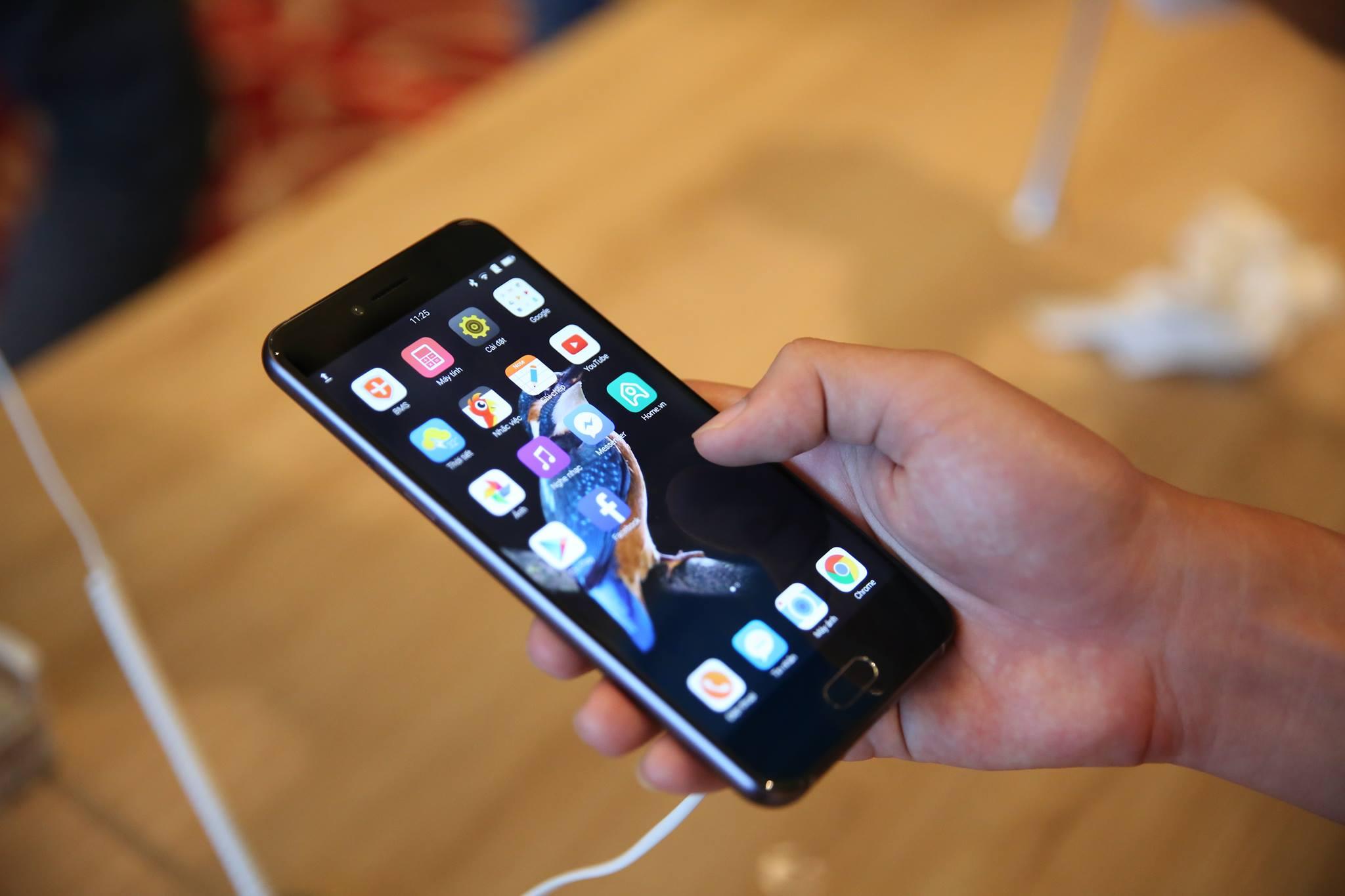 Vì sao chim gõ kiến xuất hiện trên BPhone 2017, lý do đằng sau cho thấy BKAV tinh tế chẳng kém Apple - Ảnh 1.
