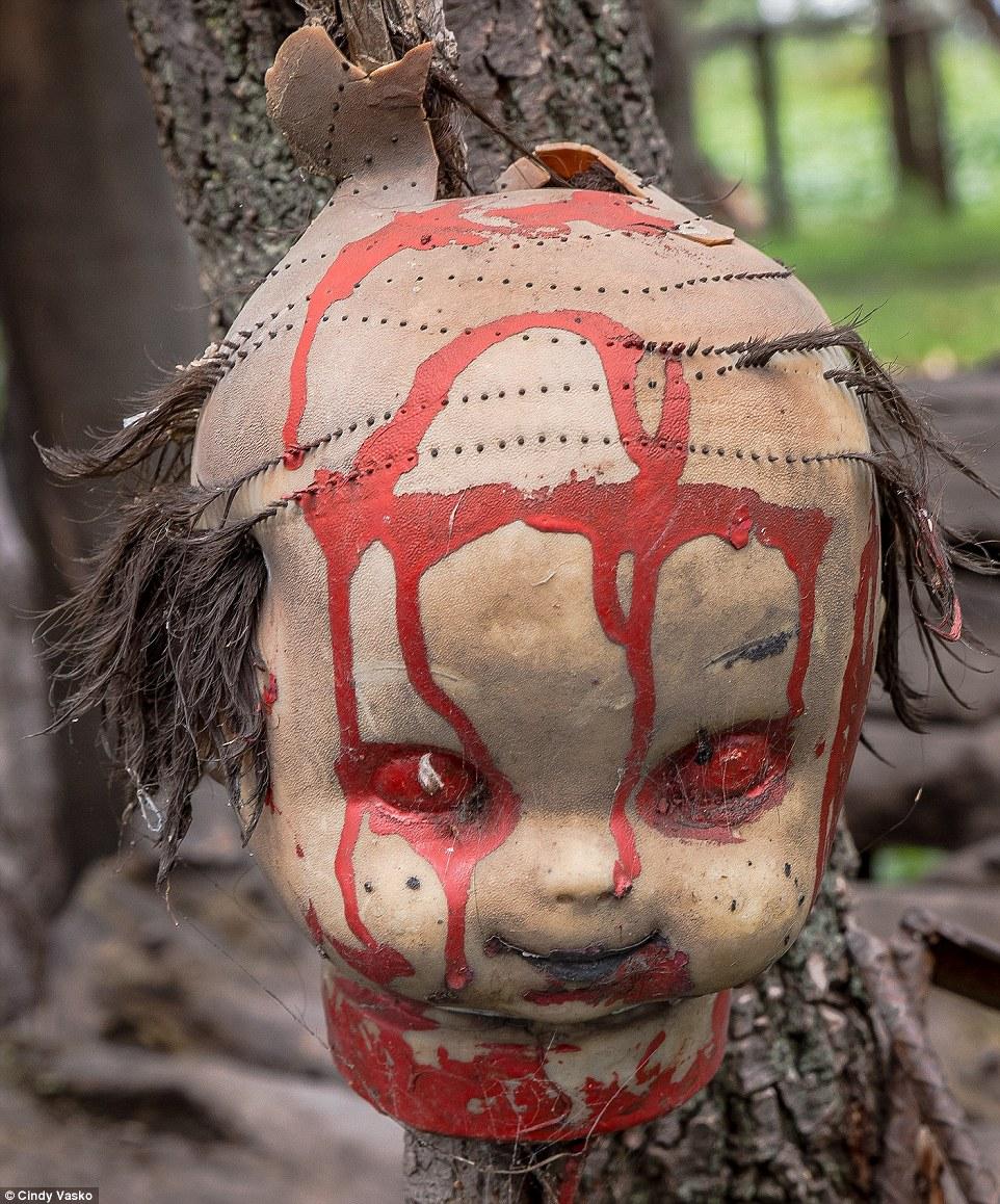 Cơn ác mộng Isla de las Munecas: Hòn đảo với hàng nghìn con búp bê kinh dị được treo lủng lẳng trên cây - Ảnh 2.