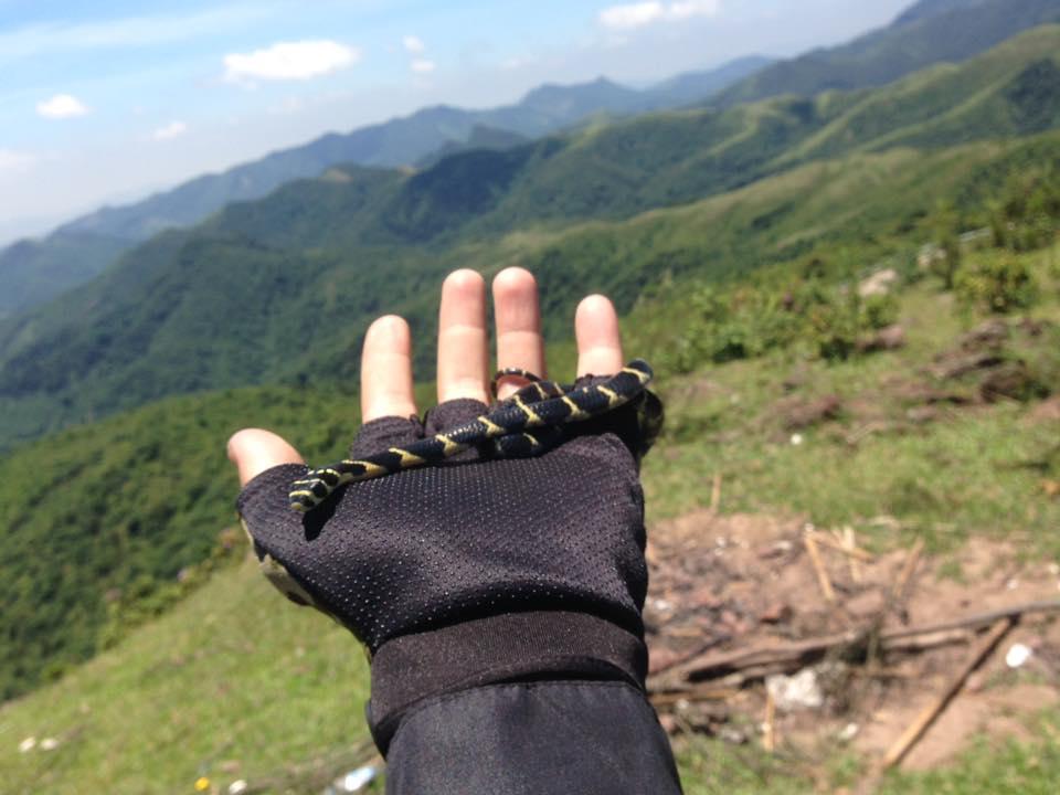 Thanh niên gây xôn xao khi đưa rắn hổ mang chúa đi khắp Hạ Long và chụp bộ ảnh Nắm tay em đi khắp thế gian - Ảnh 4.