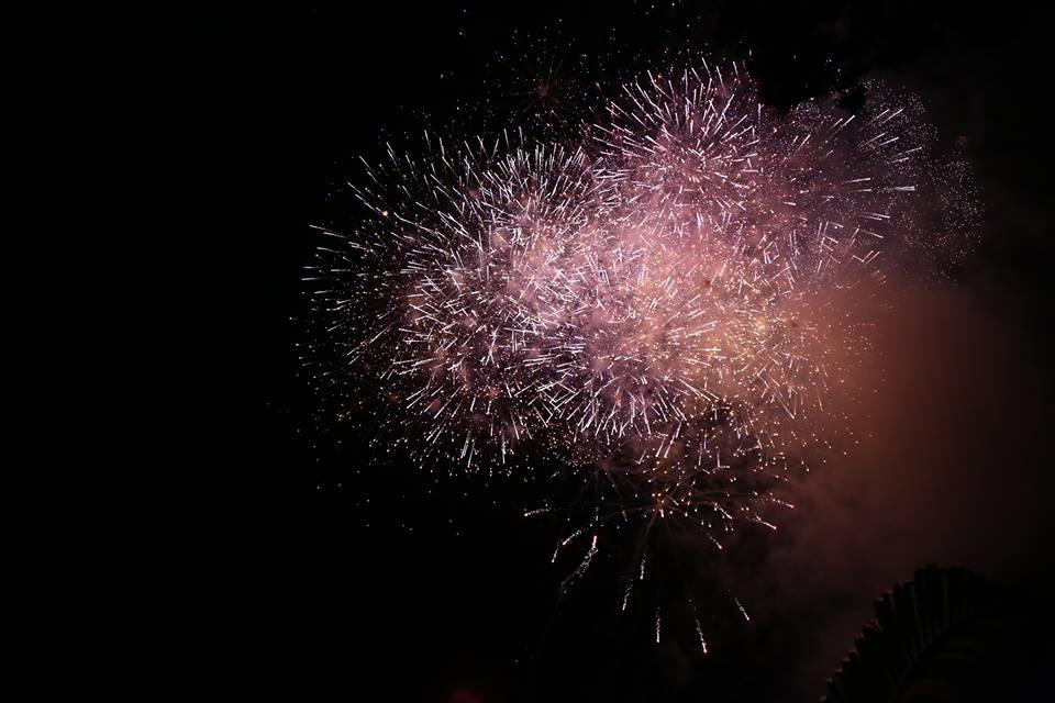 Hàng ngàn người dân đổ về Công viên Đầm Sen xem pháo hoa mừng Tết Độc Lập - Ảnh 16.