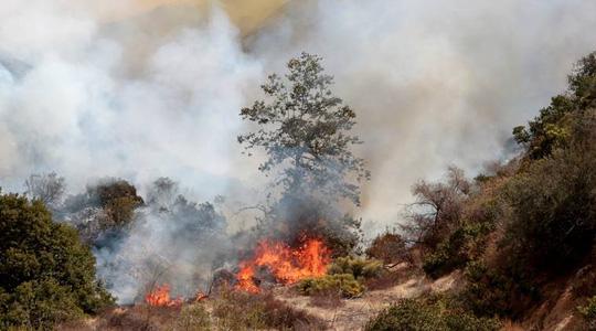 """Mỹ: Los Angeles """"gồng mình"""" trước vụ cháy rừng lịch sử - Ảnh 1."""