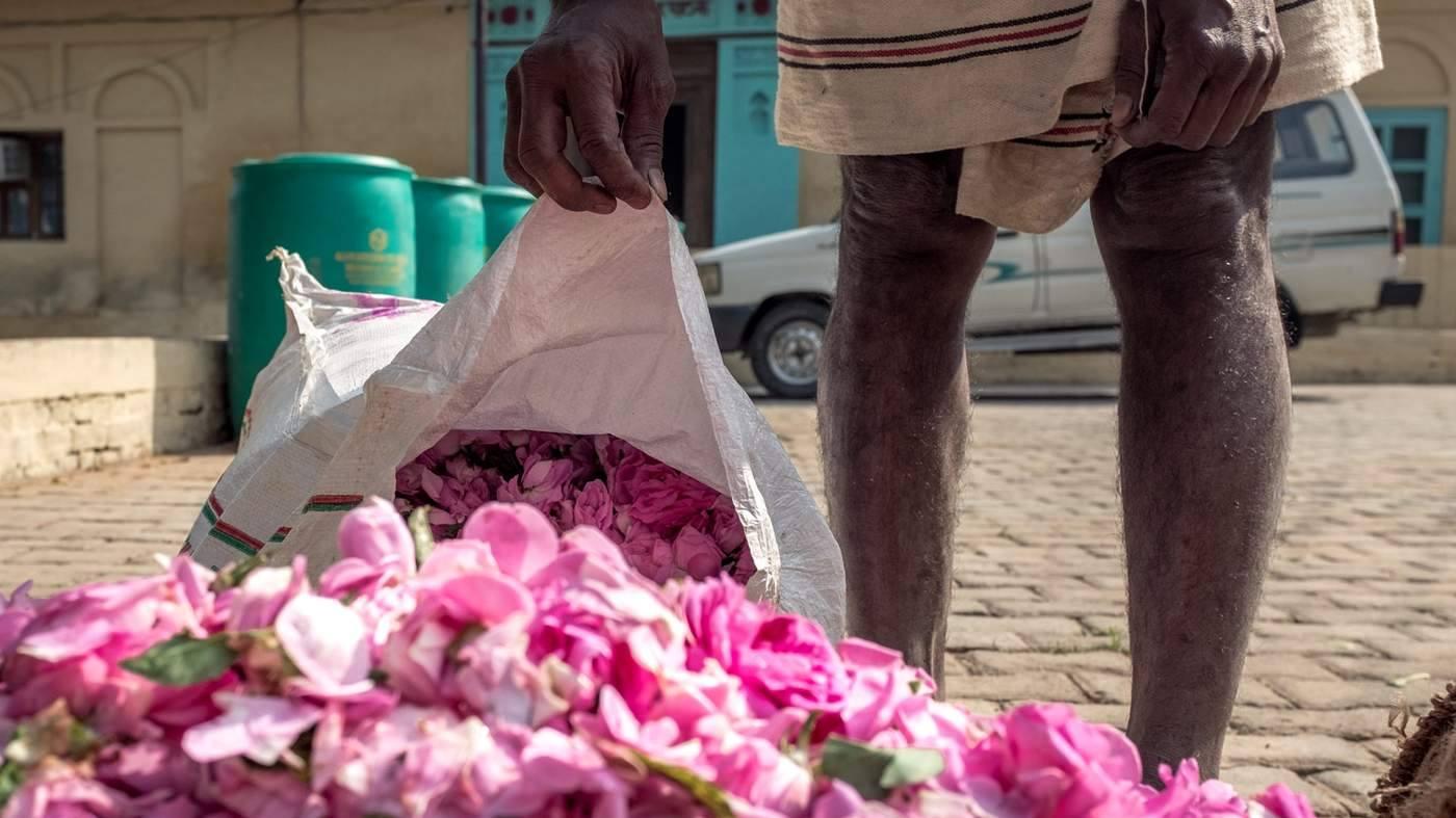Kinh đô nước hoa của Ấn Độ, nơi cất giữ linh hồn của những mùi hương và cuộc chiến với ngành nước hoa công nghiệp - Ảnh 4.