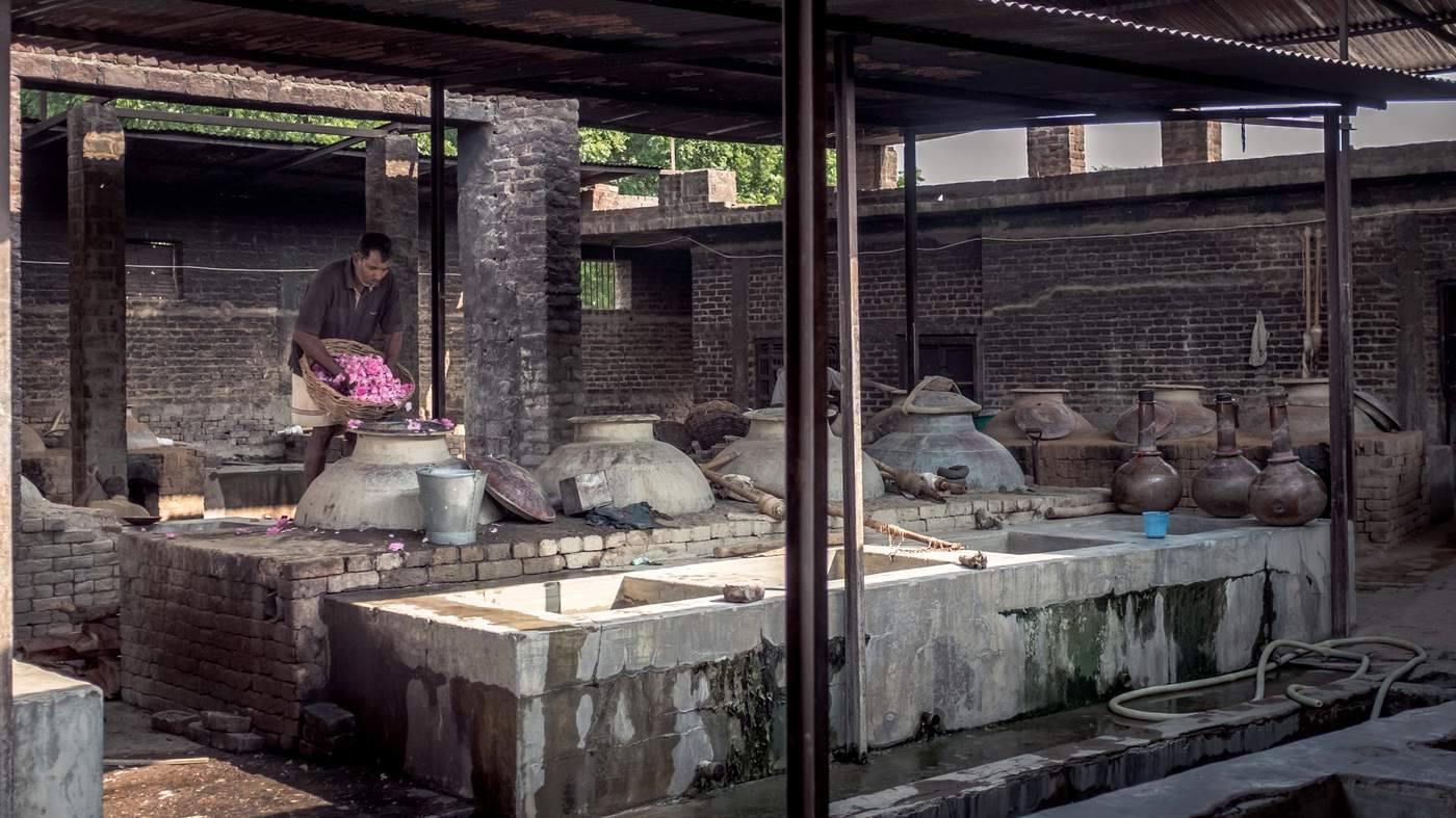 Kinh đô nước hoa của Ấn Độ, nơi cất giữ linh hồn của những mùi hương và cuộc chiến với ngành nước hoa công nghiệp - Ảnh 6.