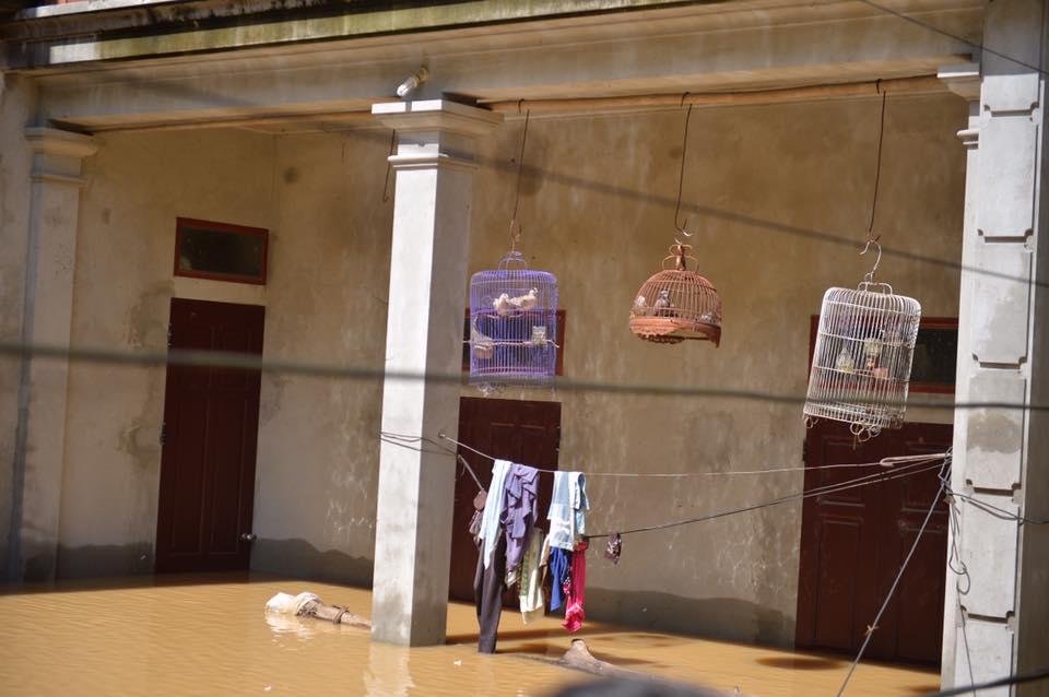 Chùm ảnh: Nhà ngập sâu đến ngang cửa, người dân Ninh Bình dùng chậu nhôm, ghế gỗ chèo thuyền đi lại trong ngõ - Ảnh 9.