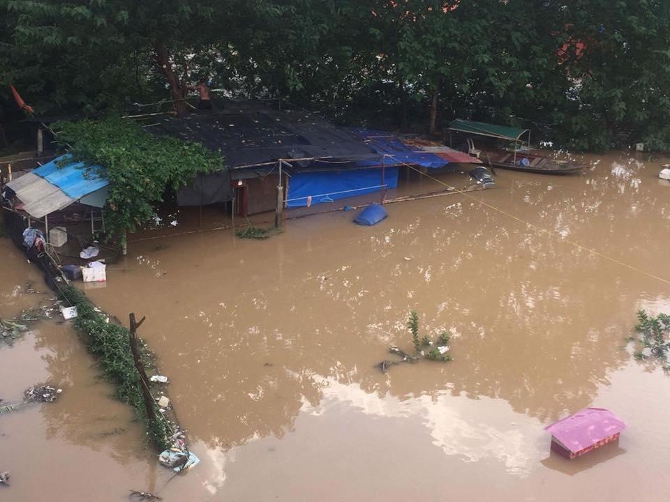 Nước sông Hồng dâng cao, nhiều hoa màu cùng nhà dân bị ngập, tàu thuyền không thể di chuyển qua cầu Long Biên - Ảnh 6.