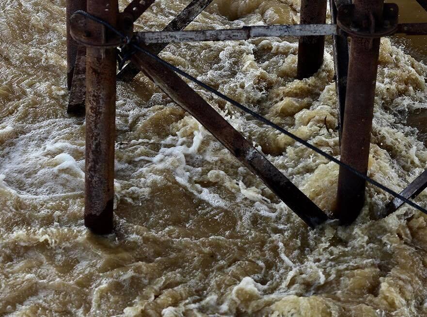 Nước sông Hồng dâng cao, nhiều hoa màu cùng nhà dân bị ngập, tàu thuyền không thể di chuyển qua cầu Long Biên - Ảnh 1.