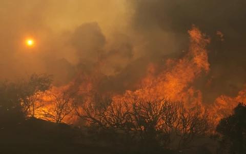 Ngọn lửa đã thiêu rụi 70.000 hec-ta rừng ở California, Mỹ. Ảnh: Reuters.
