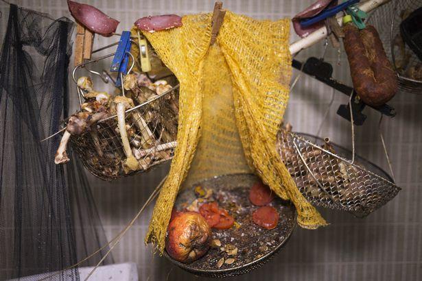 Rùng mình căn phòng của người đàn ông thích sưu tập rác thải: Đồ không dám vứt, rác chất thành đống - Ảnh 14.