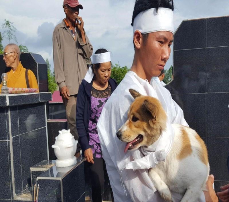 Cái chết uất hận của chú chó đang để tang chủ - Ảnh 1.