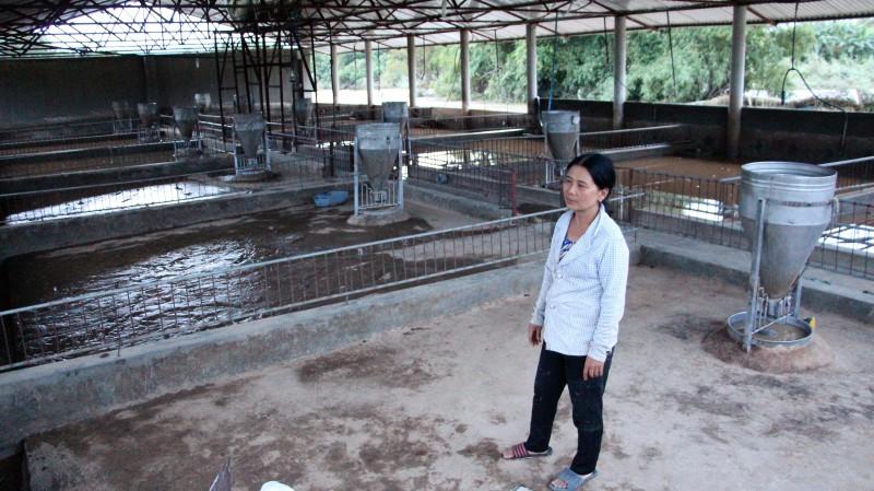 Nước lũ dâng cao, cuốn trôi đàn heo hơn 300 con của bà Phan Thị Hường. Sau 1 đêm, tất cả giờ chỉ là những chuồng trống. Ảnh: Quốc Nhựt
