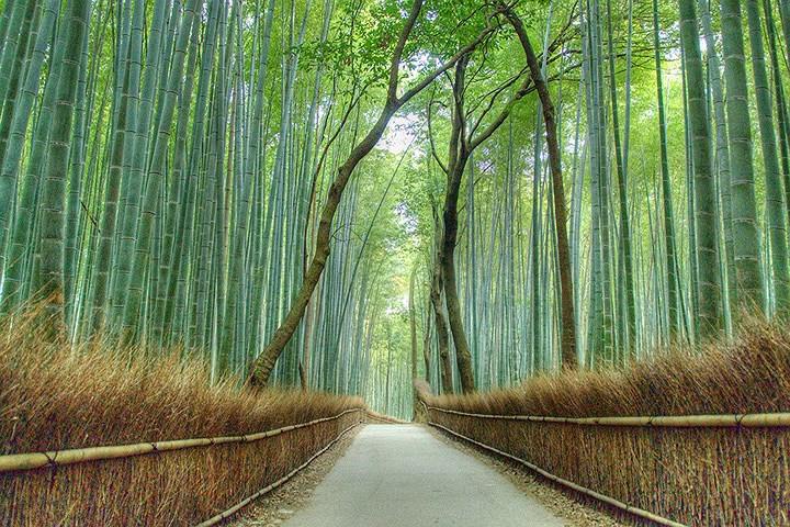 Cảnh sắc mê hồn của 10 địa danh đẹp nhất thế giới - Ảnh 3.