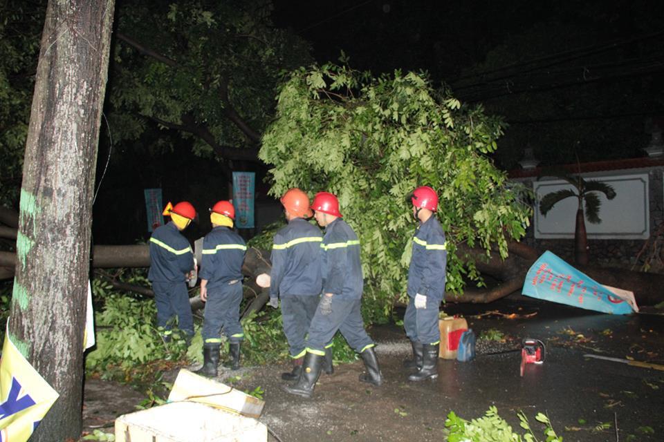 Mưa lớn ở Sài Gòn trước bão số 14, 10 cây xanh bật gốc trên đường làm đứt đường dây điện, đè sập mái nhà dân - Ảnh 3.