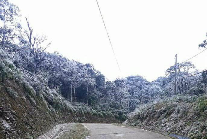 Nhiệt độ giảm còn 1 độ C, núi Phia Oắc (Cao Bằng) xuất hiện băng giá - Ảnh 4.