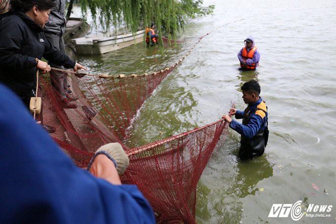 Ảnh: Công nhân ngâm mình trong nước lạnh dồn cá trước khi nạo vét Hồ Gươm - Ảnh 5.