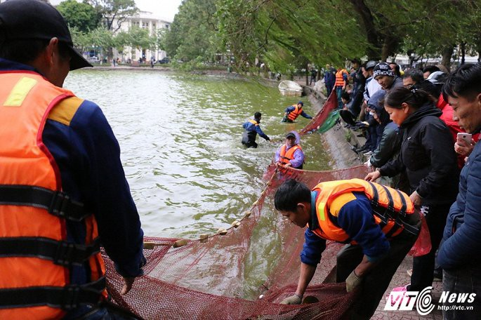 Ảnh: Công nhân ngâm mình trong nước lạnh dồn cá trước khi nạo vét Hồ Gươm - Ảnh 7.