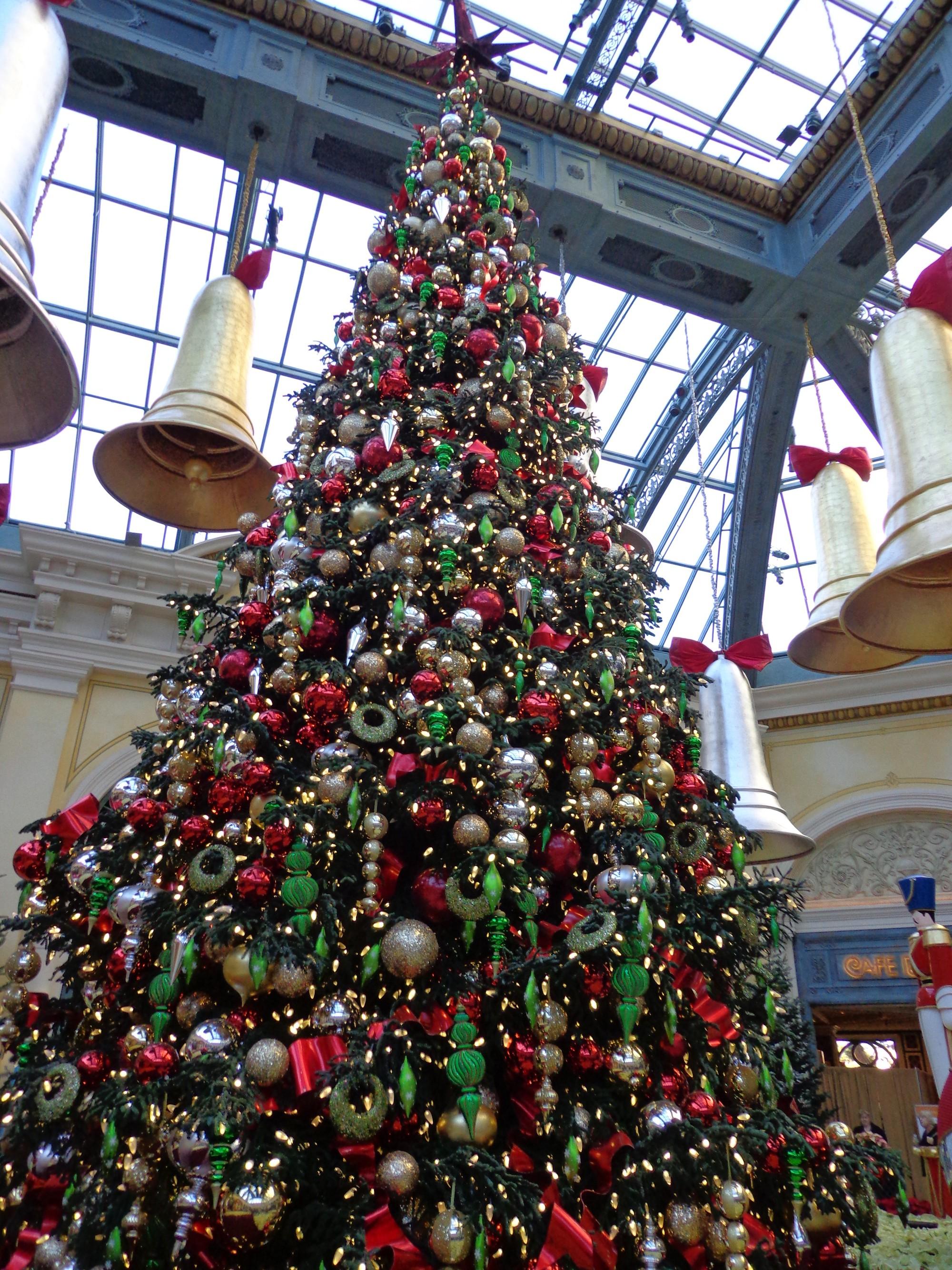 Khung cảnh đón Giáng sinh sớm ở nhiều nơi trên khắp thế giới: Lộng lẫy, nguy nga và ấm áp - Ảnh 15.