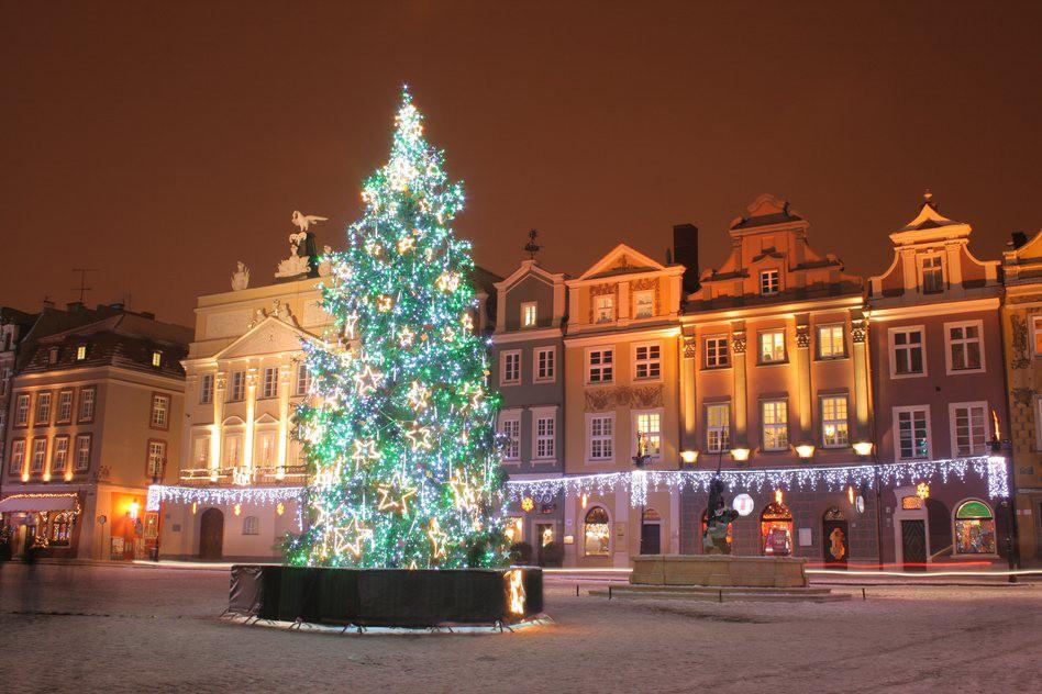 Không khí Giáng sinh ngập tràn trên toàn thế giới - Ảnh 15.