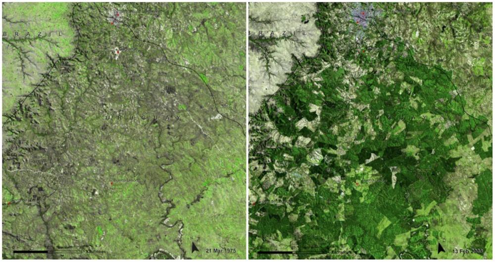 Lục lọi kho ảnh của NASA để thấy Trái đất đã thay đổi khủng khiếp đến thế nào - Ảnh 12.