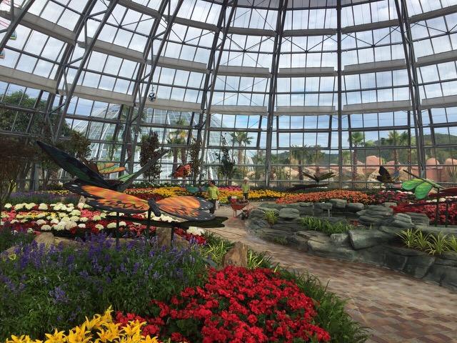 Vinpearl Land mở cửa Đồi Vạn Hoa - Công viên thực vật 5 châu độc đáo nhất Việt Nam - Ảnh 3.