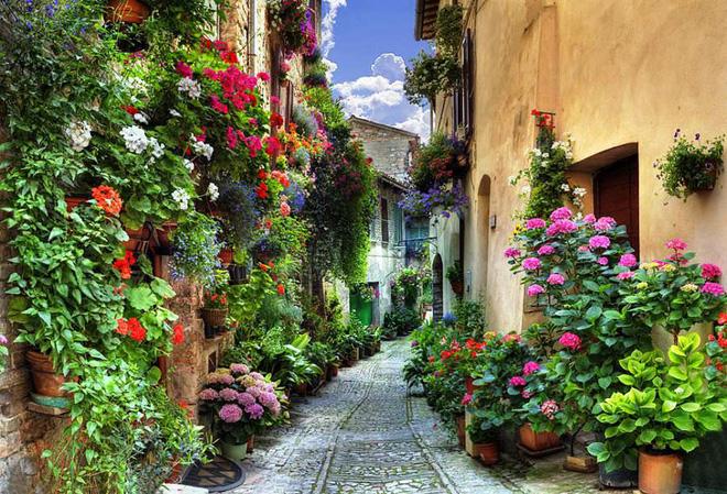 Ngất ngây đắm chìm trong những ngôi làng phủ đầy hoa tươi khắp thế giới - Ảnh 3.