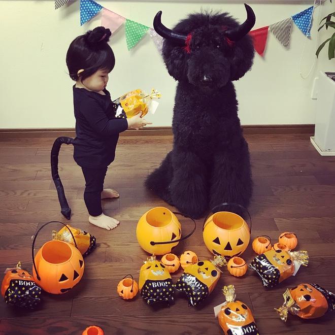 Loạt ảnh hóa trang Halloween hoành tráng nhất mạng xã hội của bé gái Nhật và những người bạn thú cưng - Ảnh 22.