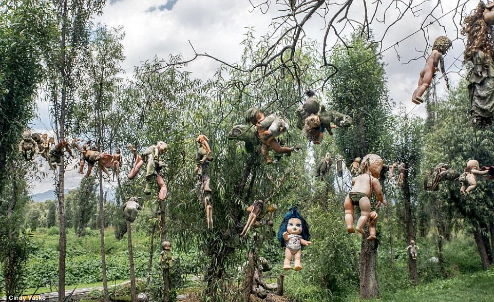 Cơn ác mộng Isla de las Munecas: Hòn đảo với hàng nghìn con búp bê kinh dị được treo lủng lẳng trên cây - Ảnh 6.