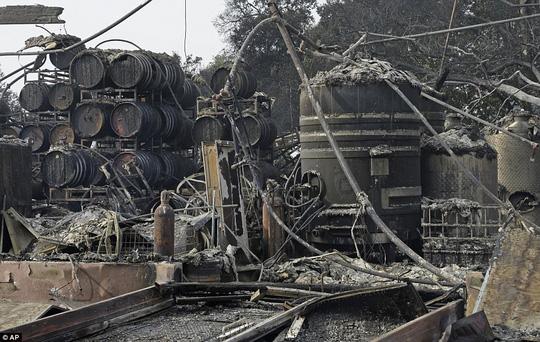 Dòng sông rượu vang sôi sùng sục sau cháy rừng ở California - Ảnh 4.