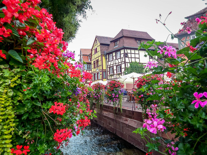 Ngất ngây đắm chìm trong những ngôi làng phủ đầy hoa tươi khắp thế giới - Ảnh 4.