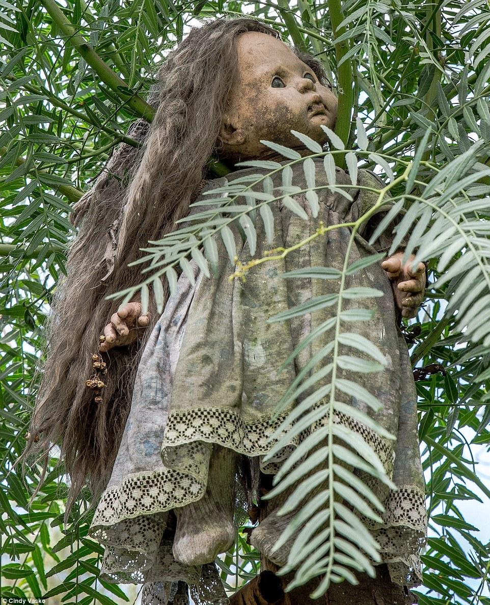 Cơn ác mộng Isla de las Munecas: Hòn đảo với hàng nghìn con búp bê kinh dị được treo lủng lẳng trên cây - Ảnh 13.