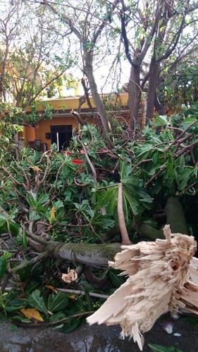 Đảo Trường Sa và nhà giàn DK1 sau bão Tembin - Ảnh 5.
