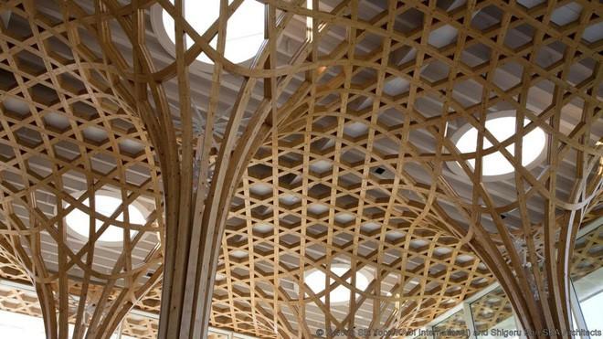 Đây là 10 trần nhà đẹp nhất thế giới, ngắm mỏi cổ cũng không thấy chán - Ảnh 6.