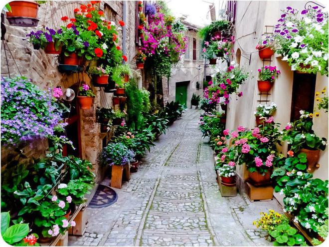 Ngất ngây đắm chìm trong những ngôi làng phủ đầy hoa tươi khắp thế giới - Ảnh 6.